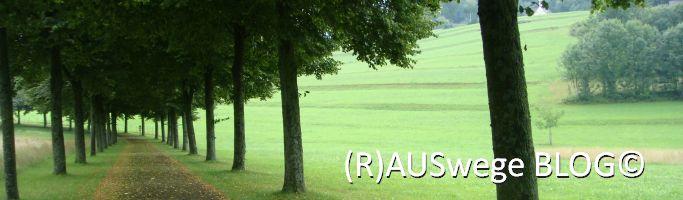 rauswege-Blog